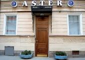 Nevsky Aster